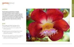 cspearman_portfolio_2011_Page_27